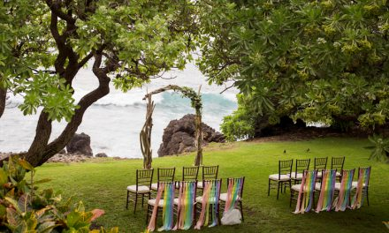 Rainbow Inspired Maui Wedding at the Kukahiko Estate